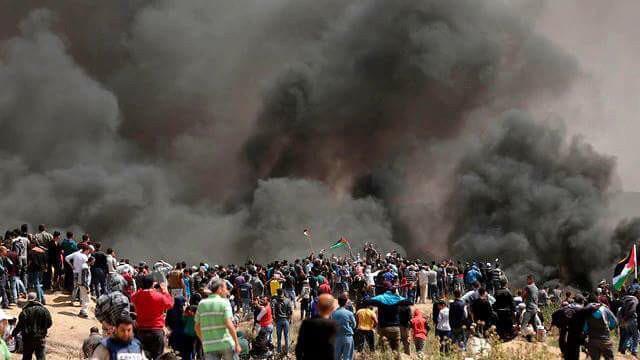 Informe Palestina