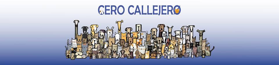 Con Astrid Sánchez, del proyecto Cero Callejero